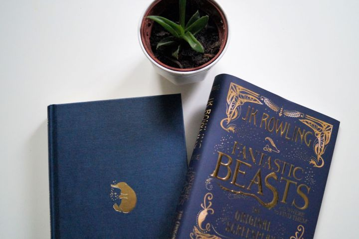 Fanstastic Beasts and Where to Find Them Cover